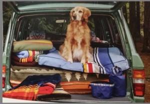 Carolina Pet Company & Pendleton Woolen Mills Natural Park Collection Debuting Summer of 2015