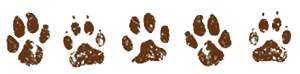 owner paw prints